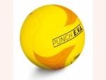 Faustball Punch E.V.A.